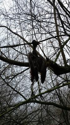 Eine sitzende Krähe verhungert.