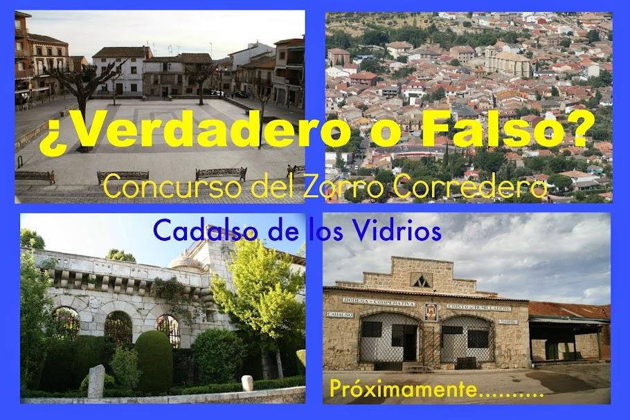 """Concurso del Zorro Corredero """"Verdadero o Falso"""""""