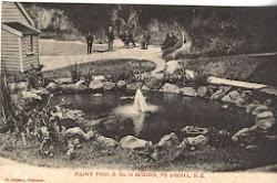 Te Aroha Postcard