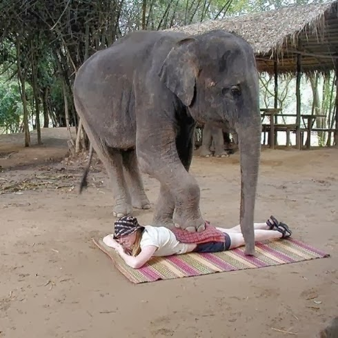 Elephant Style of Massage therapy