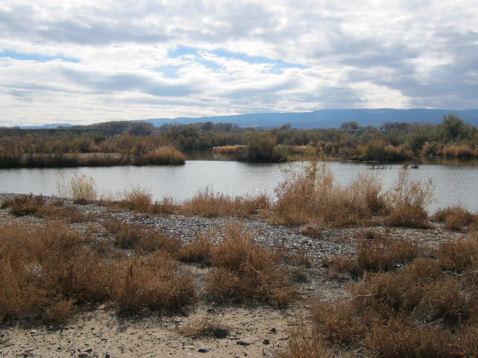 Gjhikescom Corn Lake Section