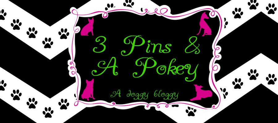 3 Pins and A Pokey