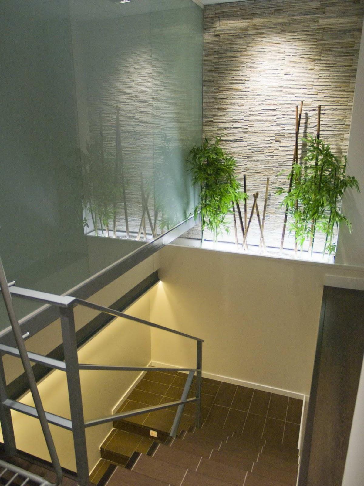 Baño General De Un Paciente En Ducha: una armonía en la estética del diseño en cada uno de los espacios