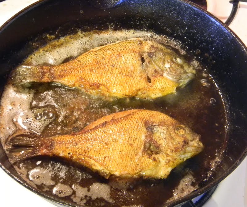 Caveman cuisine pan fried pan fish tony fed for Best fish to pan fry