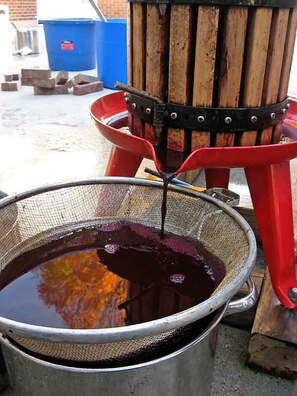 The art of homebrewing and wine making helping restore for Home wine press