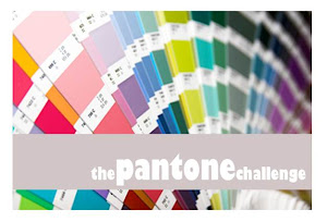 THE PANTONE CHALLENGE