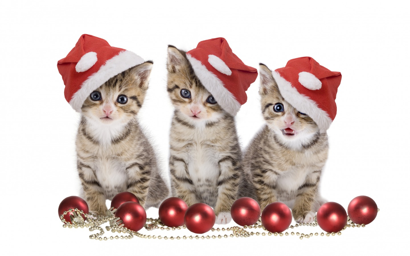 Animated Gifs Christmas wallpapers for kids funny collection download