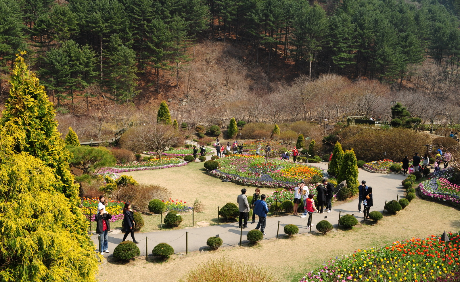 Images of Korea: PhotoTrip to the Garden of Morning Calm(아침고요수목원)