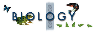 DOWNLOAD SOAL UN BIOLOGI SMA/MA TERBARU