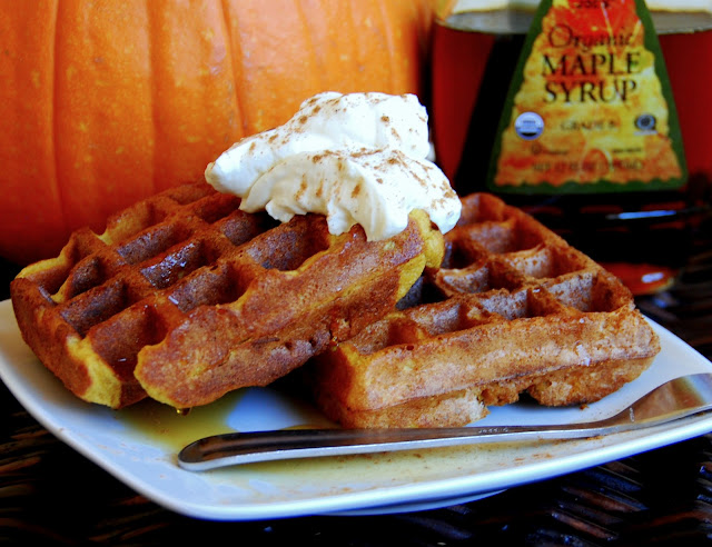 close up of 2 pumpkin waffles with whipped cream on top in front of a pumpkin and maple syrup bottle