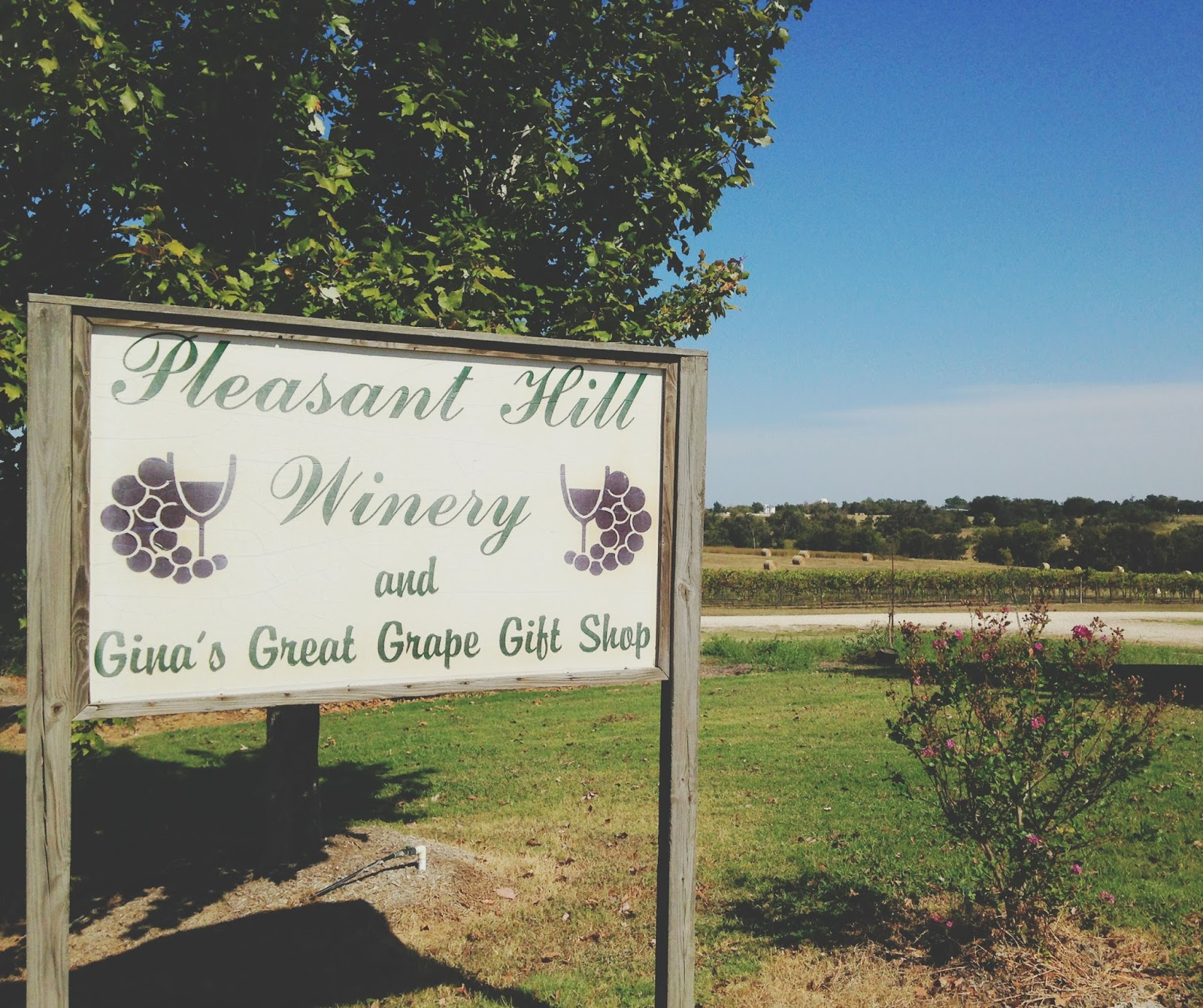 pleasant hill winery brenham 01