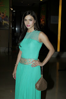 Sara Loren and other Bollywood Beauties at Prakash Jha 5 New Films Launch Party In Mumbai