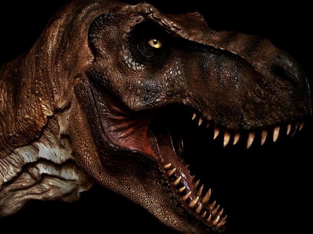 http://2.bp.blogspot.com/-F0nSTGuKtsM/TbOj8VpnveI/AAAAAAAAAuE/VF8v7kh0O-8/s1600/Tiranosaurio_Rex-1024x768-795235.jpg