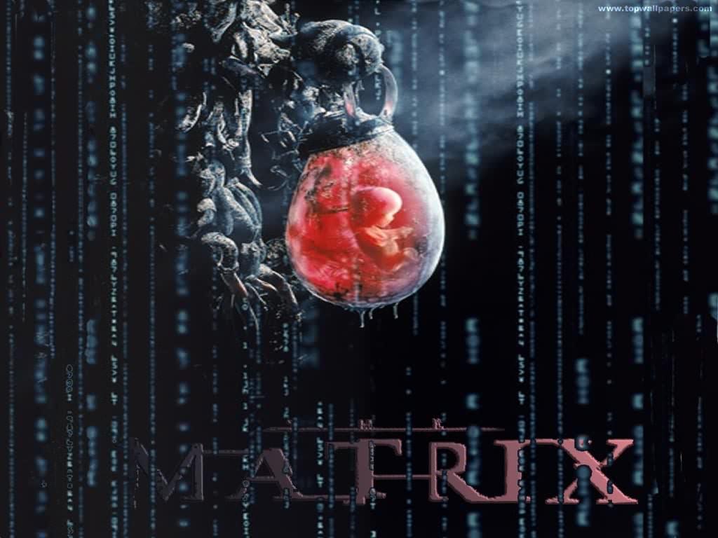 http://2.bp.blogspot.com/-F1Lc1pVInMk/TfxpA6xW45I/AAAAAAAAAek/nd5Ppc5w7B4/s1600/matrix1.jpg
