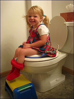 Pink Toilet Seats