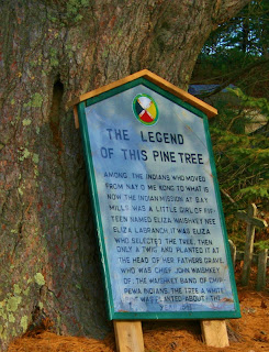White Pine and Sign in memorial of Chief John Waishkey
