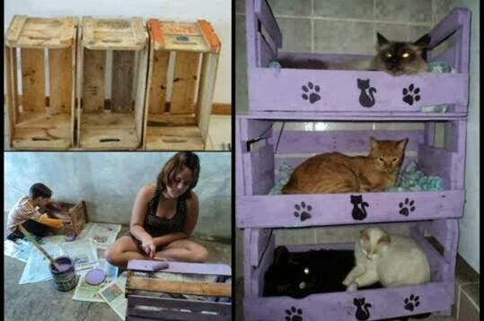 3 cucce per gatti fai da te | 3 DIY cat shelves ideas