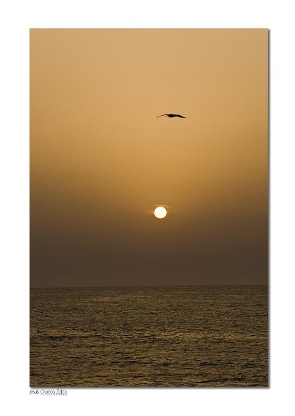 Mundo fotogr fico y m s abril 2013 for Muebles rey arre