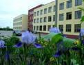 Сайт школы №21