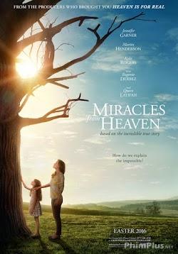 Phép Lạ Từ Thiên Đường - Miracles from Heaven