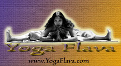 Robin Downes&#39; Yoga Flava