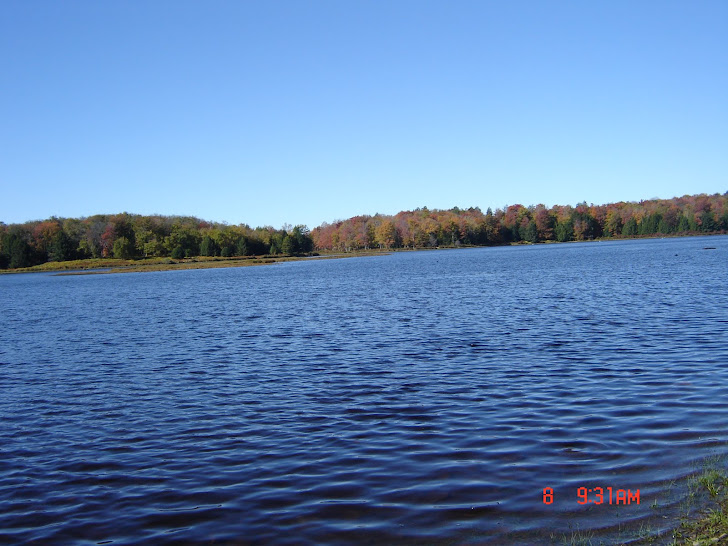 lower  lake