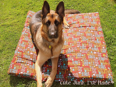 2-Hour & $20 Dog Bed Zeke and bed on grass