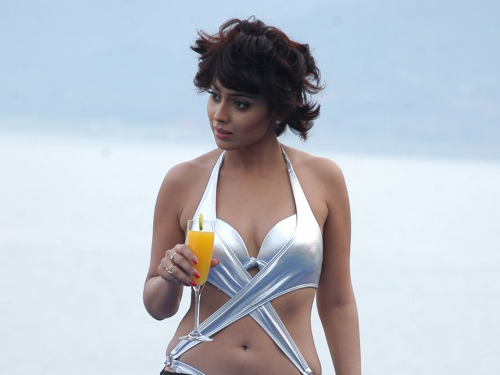 Shriya Saran Hot Spicy HD Gallery