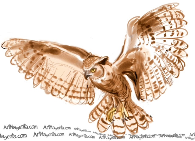 Great Horned Owl is a bird sketch by Artmagenta