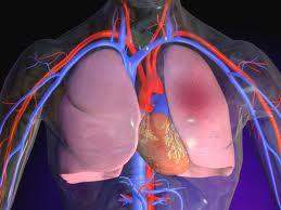 the acute pulmonary oedema causes