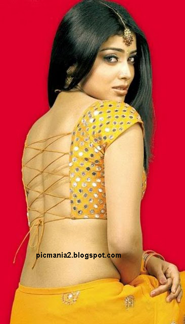 Shriya Saran showing her sexy bare back side with out bra wet saree image gallery