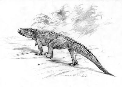 Campinasuchus
