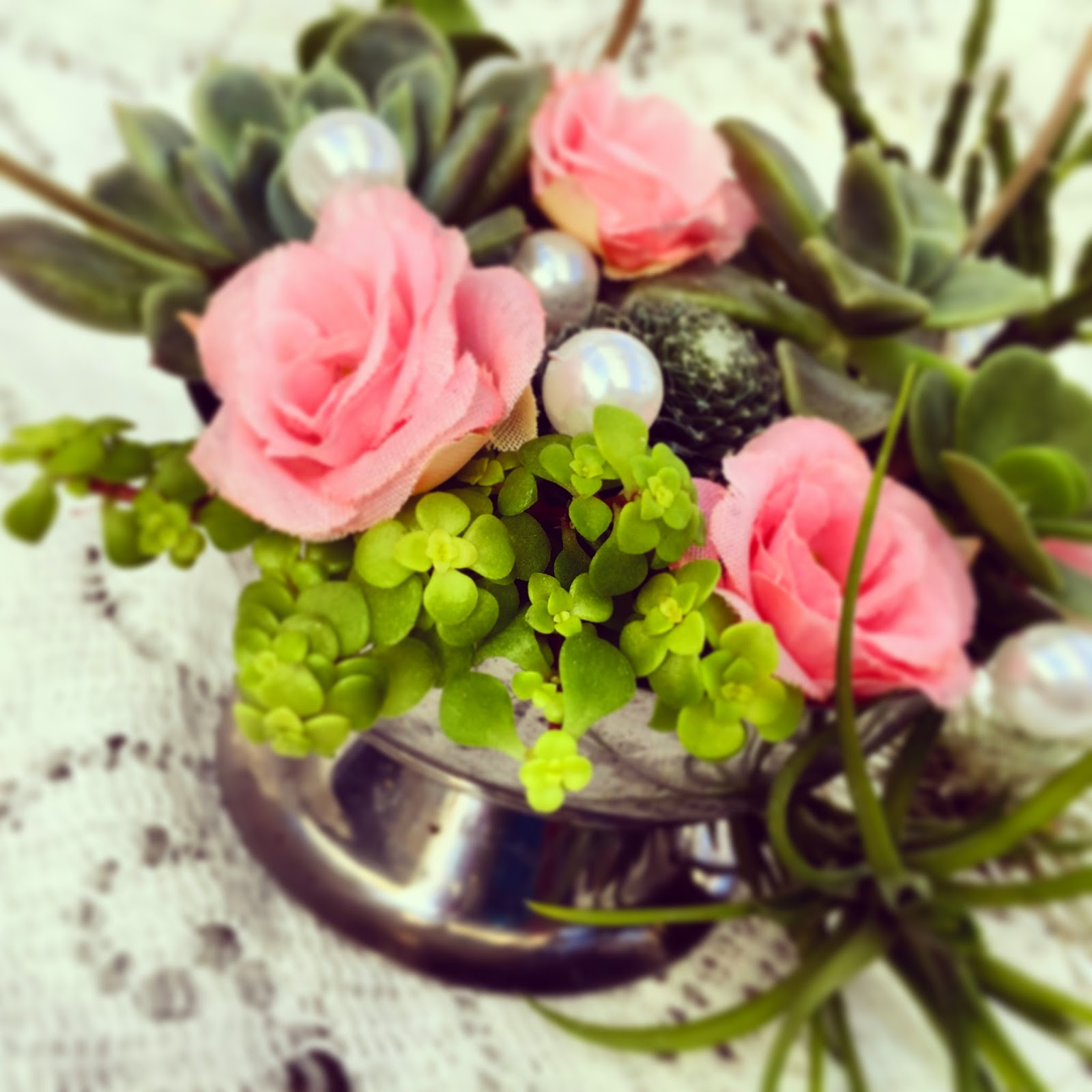The choice of indoor plants: flowers, filters, flowers, enemies and a little mysticism