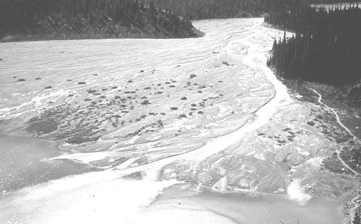 Delta merupakan bentuk lahan di muara sungai berbentuk kipas.