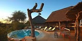NEW!!! Motswari Private Camp