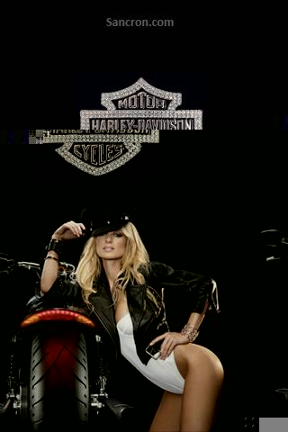 Hot Harley Wallpaper Wallpaper for Android