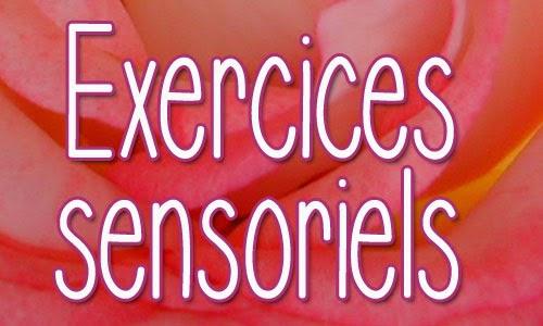 Cliquez ici pour: Exercices sensoriels
