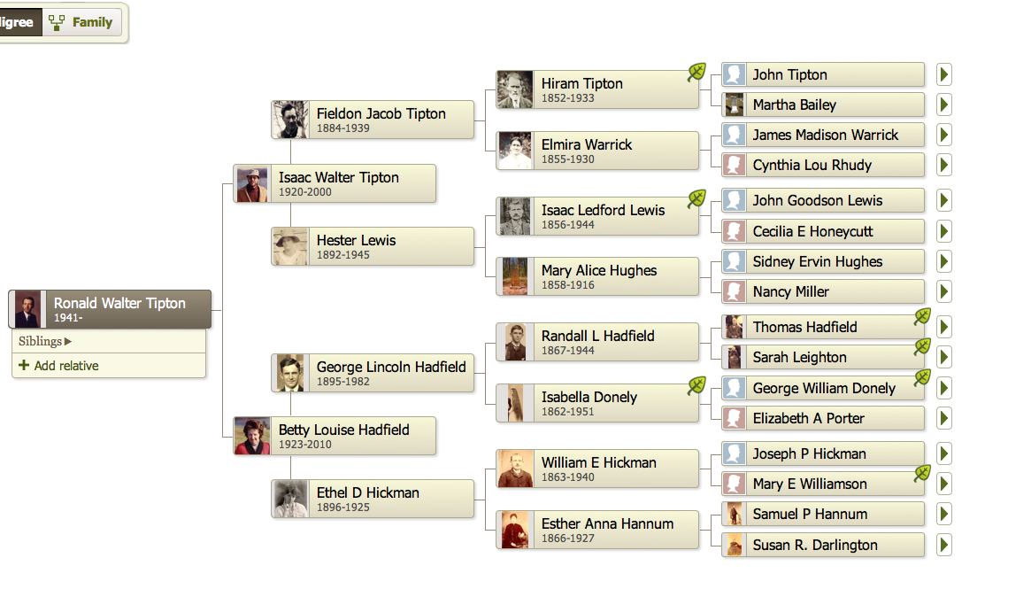 how to find my family tree history