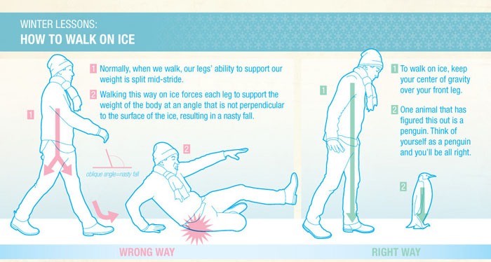 http://2.bp.blogspot.com/-F4KelrJavak/URvR5vEAxwI/AAAAAAAA8vA/iL-8wyR0MbE/s1600/how-to-walk-on-ice-infographic-penguin.jpg