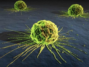 Why Medicine Won't Allow Cancer to Be Cured