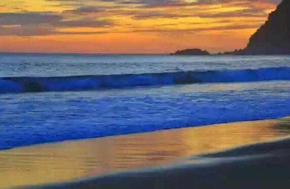 Divestasi penyu, ternyata Pantai Sukamade mempunyai suasana pantai tak terlalu ramai serta sangat cocok untuk Anda yang ingin melepaskan kepenatan karena rutinitas sehari hari. Dan juga menikmati Keindahan panorama Saat sunset di Pantai Sukamade.