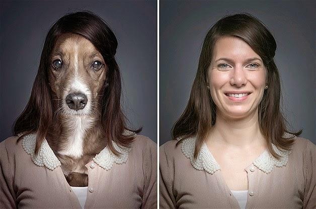 parecido de perros y sus amos