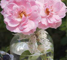 Bonica Roses...