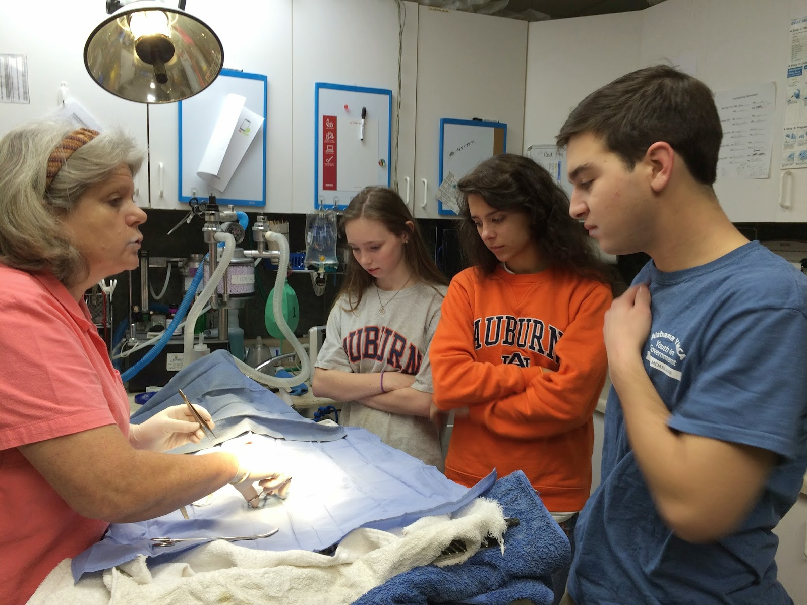 Catholic Anatomy Students Assist in Surgery at Shelter 1