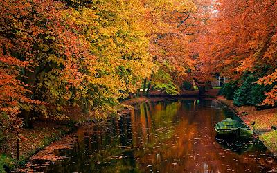 Paisaje con árboles en otoño junto al canal (1920x1200)