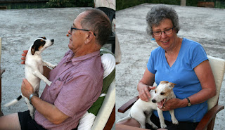 My parents with the puppies