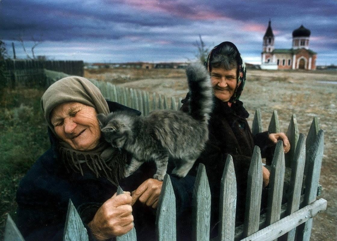 Бабушки и Кошки