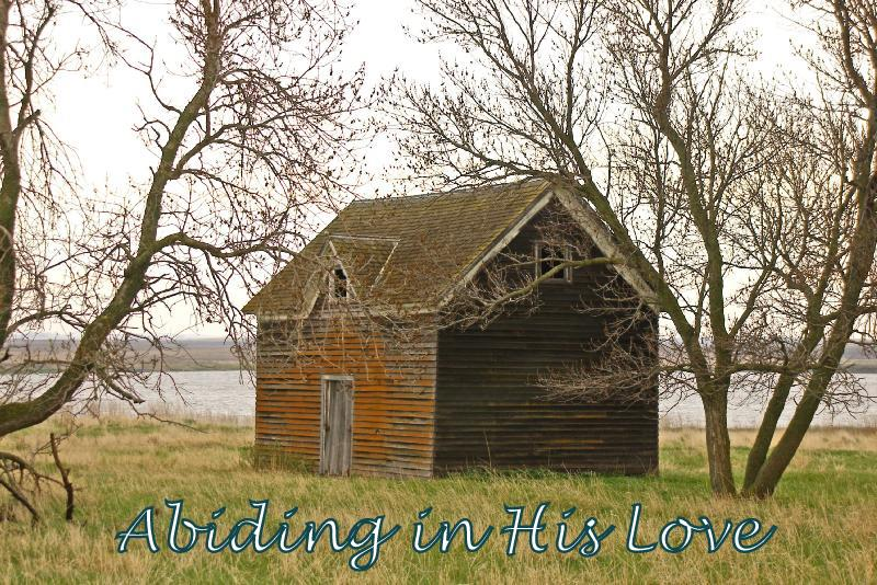 Abiding in His Love