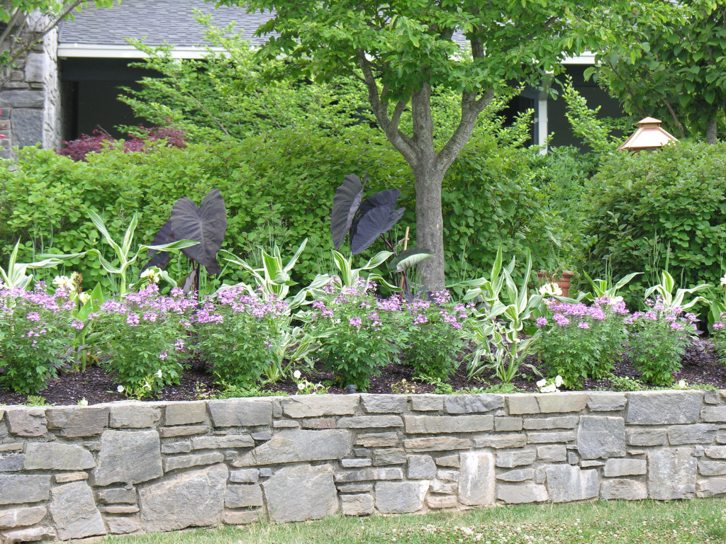More than 50 beautiful house garden and landscaping ideas for Landscape garden designers