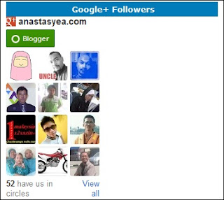 Widget Google Plus Follower
